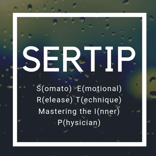 SERTIP workshop