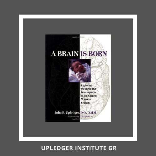 A Brain Is Born